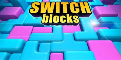 Switch blocks